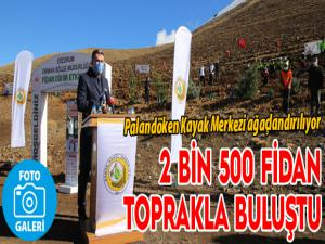 2 bin 500 fidan toprakla buluştu