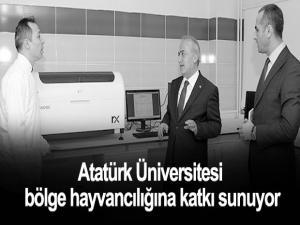 Atatürk Üniversitesi bölge hayvancılığına katkı sunuyor.