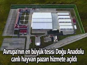 Avrupa'nın en büyük tesisi Doğu Anadolu canlı hayvan pazarı hizmete açıldı