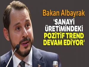 Bakan Albayrak: 'Sanayi üretimindeki pozitif trend devam ediyor'