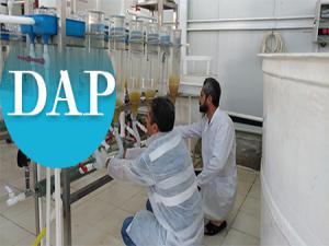 DAP destekleri meyvesini veriyor