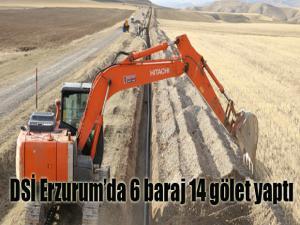 DSİ Erzurum'da 6 baraj 14 gölet yaptı