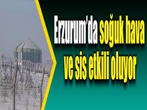 Erzurum'da soğuk hava ve sis etkili oluyor