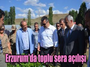 Erzurum'da toplu sera açılışı