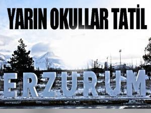Erzurum'da yarın okullar tatil edildi...