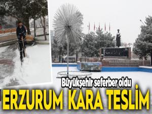 Erzurum kara teslim oldu