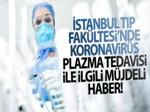 İstanbul Tıp Fakültesi'nde korona virüs plazma tedavisi ile ilgili müjdeli haber