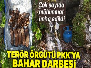 Jandarmadan PKK'ya bahar darbesi