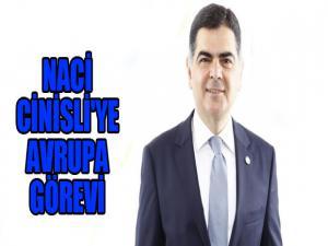 NACİ CİNİSLİ'YE AVRUPA GÖREVİ