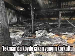Tekman'da köyde çıkan yangın korkuttu