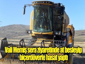 Vali Memiş sera ziyaretinde at besleyip biçerdöverle hasat yaptı