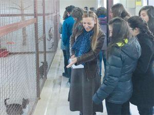 Bilkentli öğrenciler, hayvan barınağını gezdi
