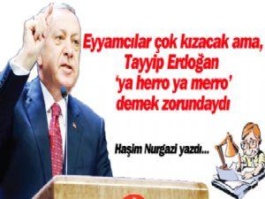 Eyyamcılar çok kızacak, ama Tayyip Erdoğan,