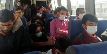 Afganistan uyruklu 29 kaçak göçmen yakalandı