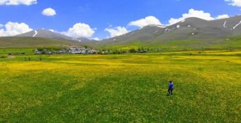 Erzurum çiçek açtı