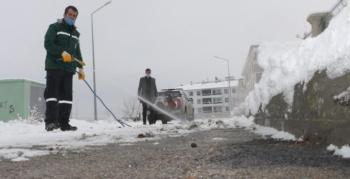 Kar altından böcek çıkınca belediye harekete geçti