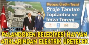Palandöken Belediyesi hayvan atıklarından elektrik üretecek