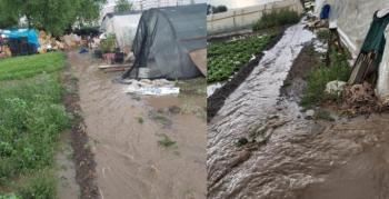 Sel ve dolu seralarda zarara neden oldu