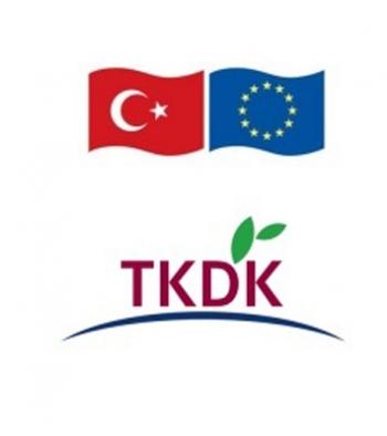 TKDK'da proje kabulleri başlıyor